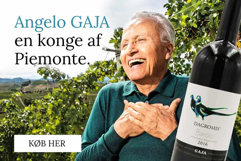 Angelo Gaja en konge af piemonte